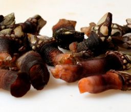 PERCEBES COCIDOS